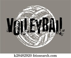distressed volleyball