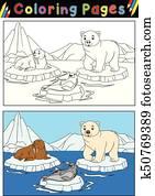 arktisch, tiere, für, ausmalbilder