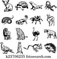 Desert animals vector black doodle