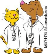 katz, und, hund, haustier, doktoren
