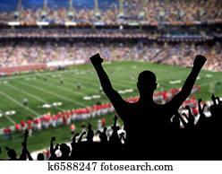 Football Fan Celebration