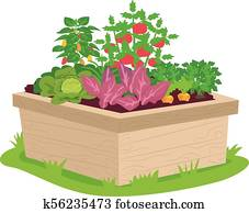 Vegetable Box Container Illustration