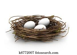 Egg and nest