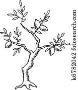 Old lemon tree