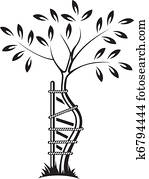The symbol of orthopedics and traum