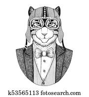 Banque D Illustrations Brithish Cat Elegant Animal Animal