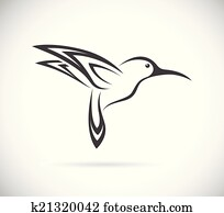 vektor, bild, von, ein, kolibri, design