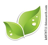 Green leaf with water droplets. Vector