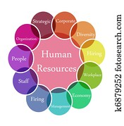 Human Resources illustration