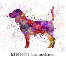 Beagle in watercolor