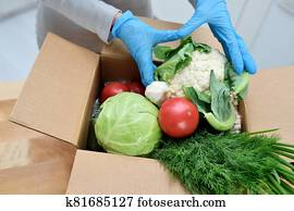 Volunteer in gloves with food donation box puts vegetables to help others. donation box with foodstuffs