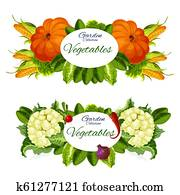 Natural vegetables and grocery products vector