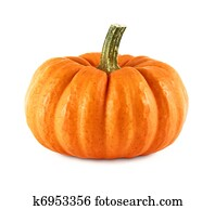 Neat pumpkin on white