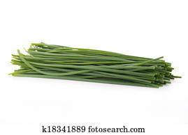 chives images our top 1000 chives stock photos fotosearch