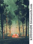 camping in forest at night