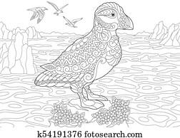 papageitaucher, see vogel