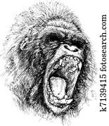 Raging ape illustration