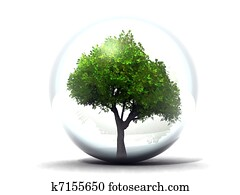tree in a glass sphere