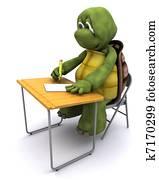 tortoise sat at school desk