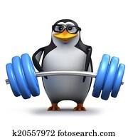 3d Penguin weightlifter