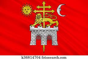Flag of Albi, France