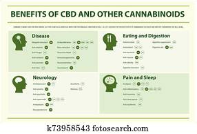Benefits of CBD and Other Cannabinoids horizontal infographic