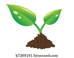 green sprout and soil