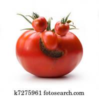 Art cheerful Mr. Tomato
