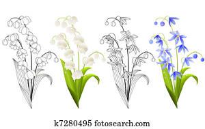 sammlung, von, frühjahrsblumen