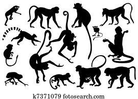 Monkey silhouettes collection