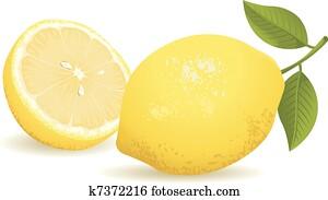 zitrone, frucht