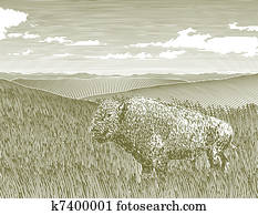 Woodcut Bison Scene