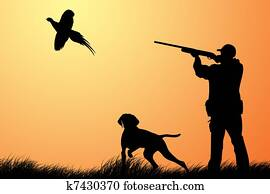 Hunting for a pheasant