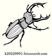 Stock Foto Käfer Arten Lucanus Cervus K13708442 Suche