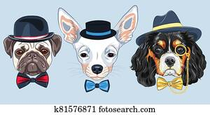 vector Set of cartoon hipster dogs