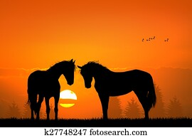 horses silhouette in love