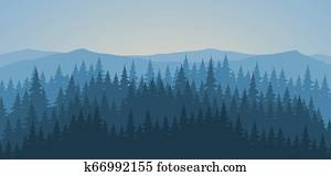 Pine forest at dawn landscape background