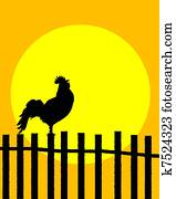 Rooster on the fence