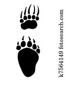 Paw prints animals