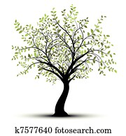 Green vector tree white background