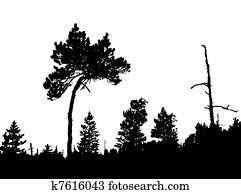 Ilustrace Z Mnoziny Borovice K11746428 Hledat Eps Klipart