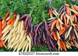 Colorful winter carrots