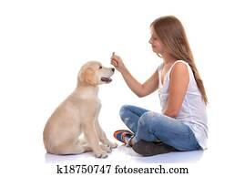 owner training puppy dog