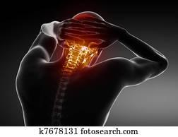 Male Jugular Spine Scan