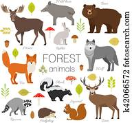 Forest animals isolated vector set. Moose, wild boar, bear, fox, rabbit, wolf, skunk, raccoon, deer, squirrel, hedgehog