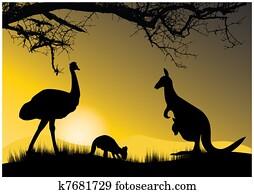 two kangaroo and emu