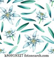 Seamless pattern of watercolor edelweiss flowers and leaves.
