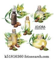 Watercolor jojoba oil set