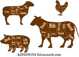 Chicken, pork, beef and lamb meat cuts scheme