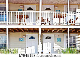 Out House Hackberry Arizona Usa Stock Photo Images 2 122